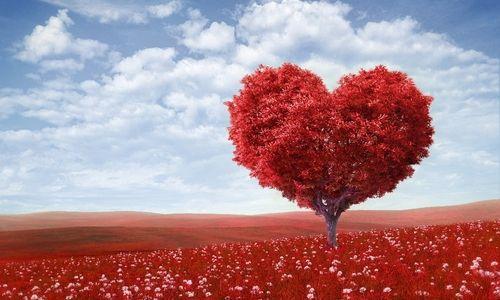 Прекрасный повод вспомнить, что здоровье стоит на первом месте, а здоровье сердца в этом деле занимает главную позицию.