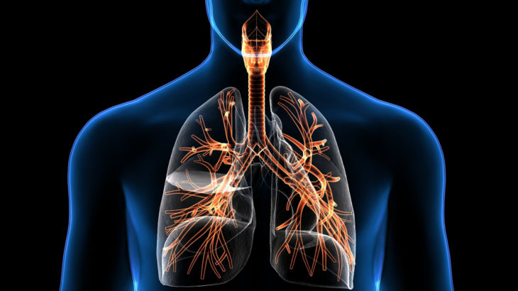 Методы исследования дыхательной системы