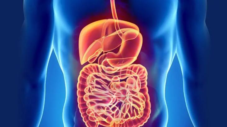 Барий для рентгена желудка — что это, как и для чего делается